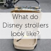 Disney Stroller Rentals: What do they look like?